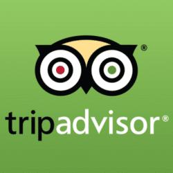 Trip adviser square